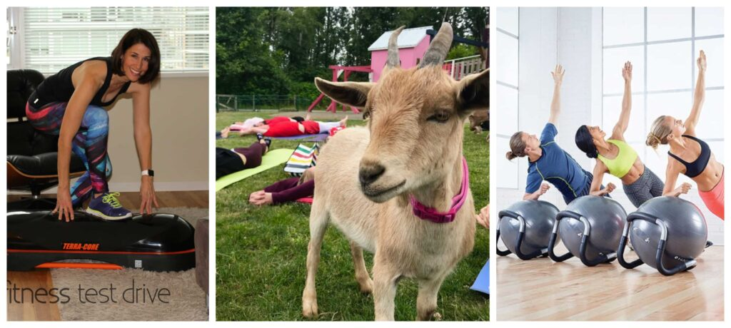 A collage of different exercises such as Goat Yoga etc..